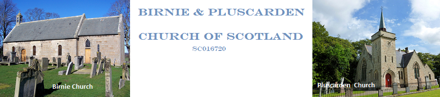 Birnie and Pluscarden Church of Scotland Logo